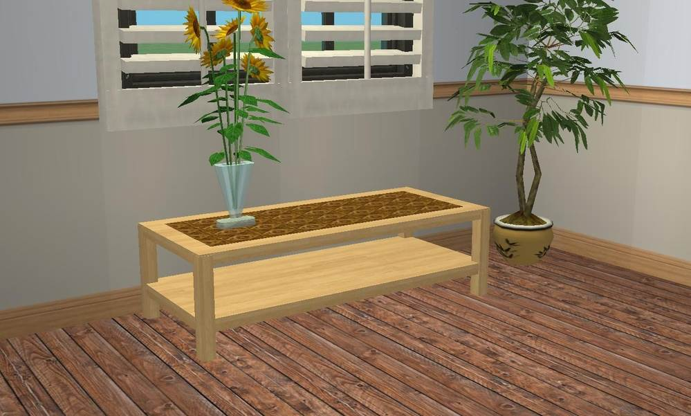 2-Layer Coffee Table