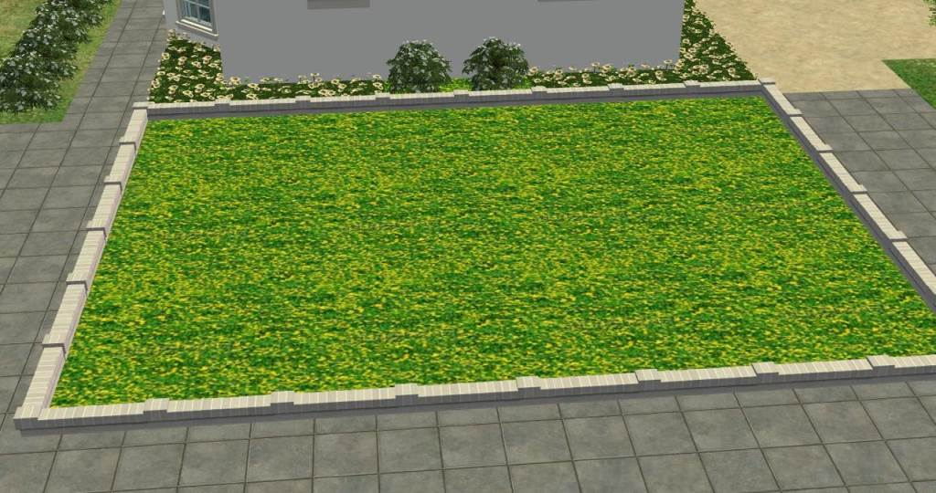 Various Grass Ground Covers