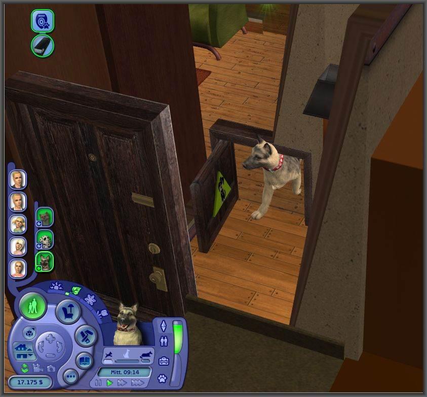 Pet Doors and other Special Doors