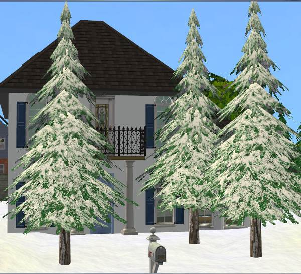 Winter Pine Tree – UPDATED